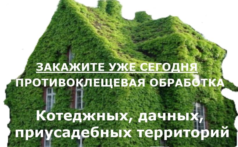 Obrabotka ot kleshei na dache3 - Смертельный бой в живой природе: крыса против норки
